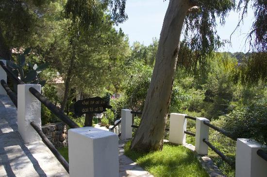 Villaggio Alberghiero Cala d'Arconte: uno dei percorsi del villaggio