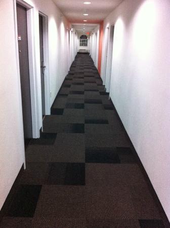 Motel 6 Indianapolis: Hallway