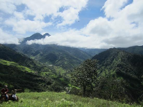 Hacienda Primavera Wilderness Ecolodge: riding to edge of jungle, heard howler monkeys!