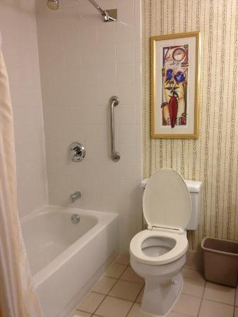 Hilton Garden Inn Charlotte Uptown: Shower