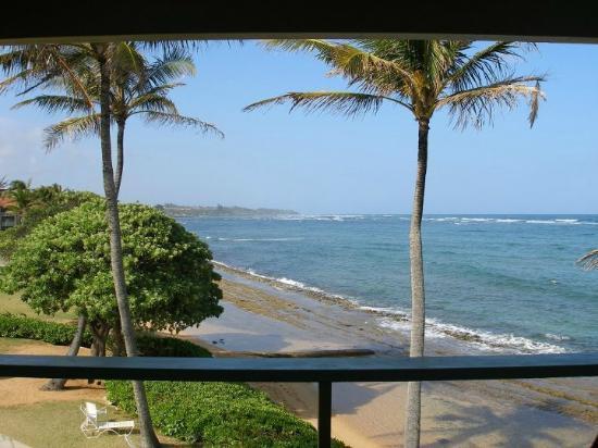 Kauai Kailani