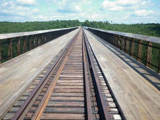 Kinzua Bridge State Park: railway tracks