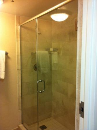 Hilton Orlando Buena Vista Palace Disney Springs: Shower