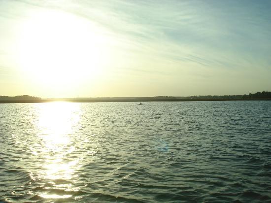 Dolphin at sunset at Hilton Head, SC
