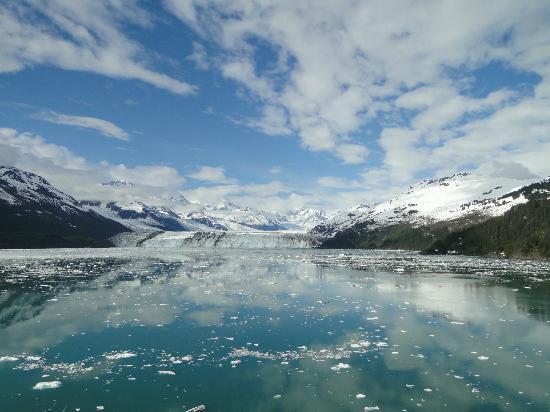 College Fjord: Glorious vistas