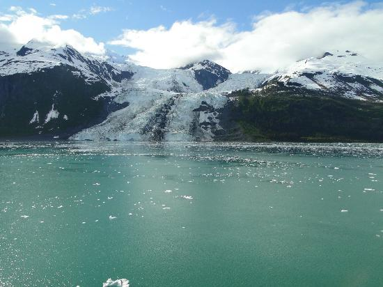 College Fjord: One of several glaciers in a row