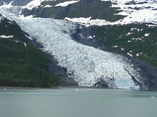 College Fjord: One of several tidewater glaciers