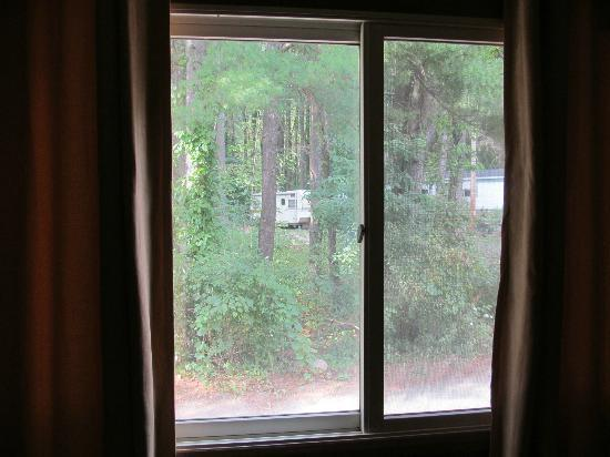 Blackthorne Resort: Looking out the room window