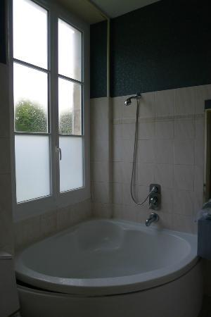 DOMAINE DE VALAUDRAN : Shower falls off the wall and there is no curtain. So BIG NO to showering
