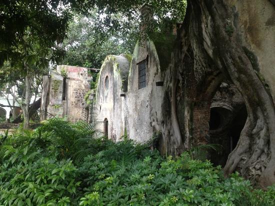Cocoyoc, México: Vista de uno de los jardines principales