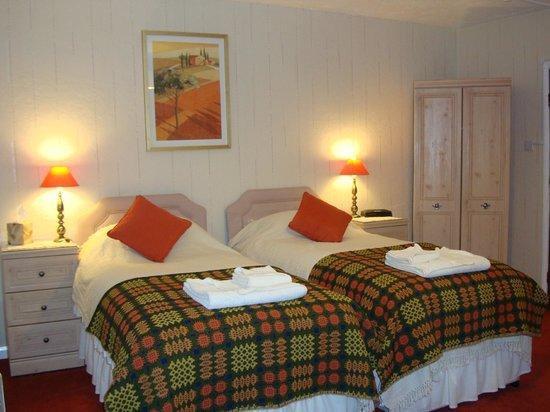Rhiwiau Guest House: Conwy Room as a twin
