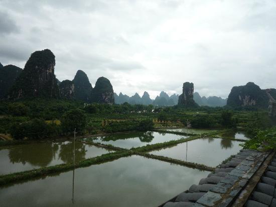 Hidden Dragon Villa: View from Room 2