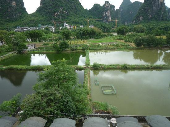 Hidden Dragon Villa: View from Room 1