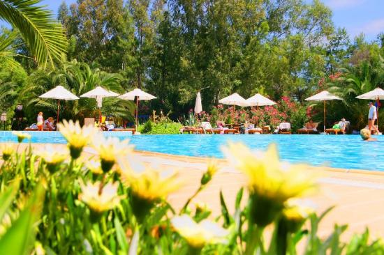TUI MAGIC LIFE Sarigerme: Pool