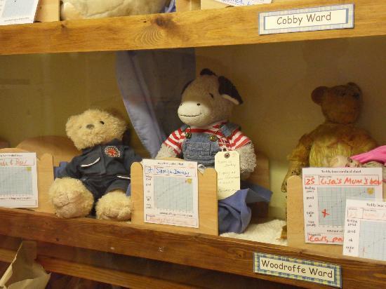 Popular Teddy Bear Hospital Buy Cheap Teddy Bear Hospital: Alice's Bear Shop And Teddy Bear Hospital (Lyme Regis