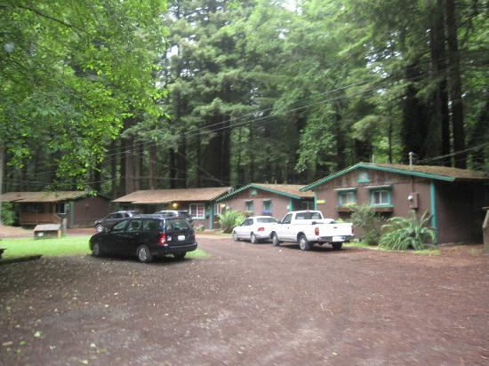 Emerald Forest Cabins & RV: Home Office