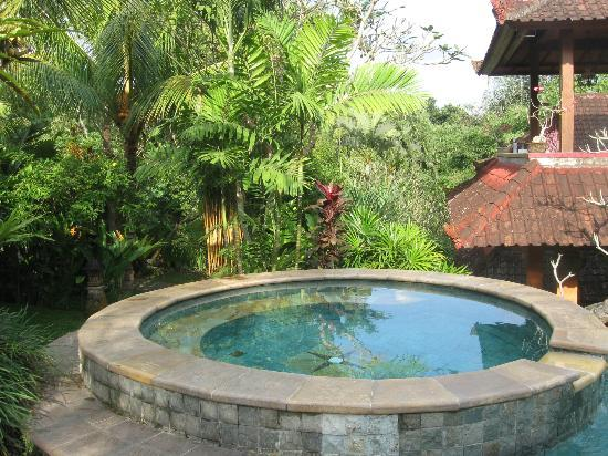 piscine foto di ubud bungalow ubud tripadvisor. Black Bedroom Furniture Sets. Home Design Ideas
