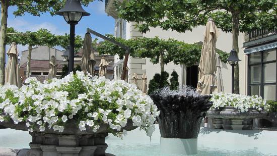 Hotel des Trois Couronnes: Terrasse