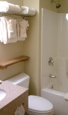 The Pointe at Castle Hill Resort : Bathroom