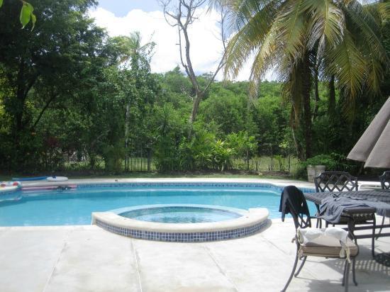 Coral Sea Villas: pool