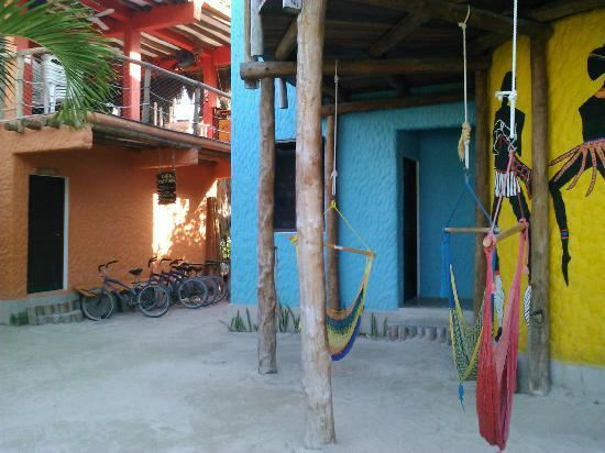 ‪‪Tribu Hostel‬: HAMMOCKS, COURTYARD