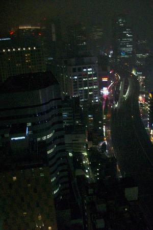 Imperial Hotel Tokyo: Night view on the bullet train tracks