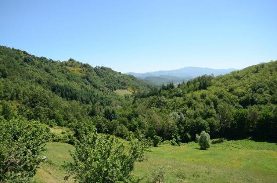 Bio Agriturismo Il Vigno: View toward the valley