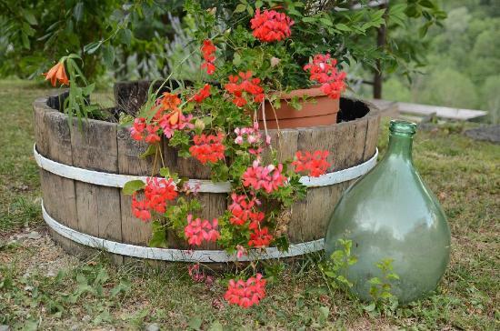 Bio Agriturismo Il Vigno: Just a picture we love. Good job decorating!