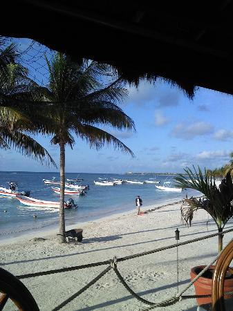 Hotel Akumal Caribe: View of the harbor from Lol Ha Restaurant