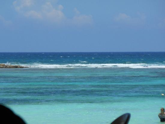 Hotel Akumal Caribe: View of the reef