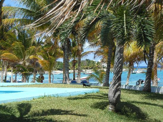Hotel Akumal Caribe : View of the beach from the pool