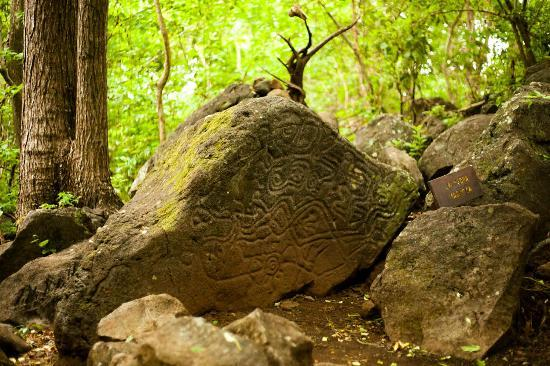 Totoco Eco-Lodge: Petroglyph