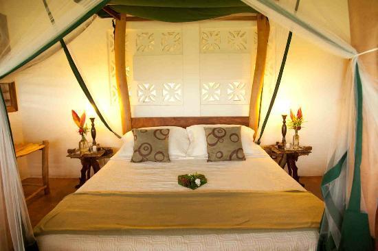 Totoco Eco-Lodge: Ometeptl Lodge