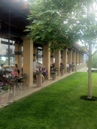Beet salad picture of terrace restaurant west kelowna for 7 summerland terrace