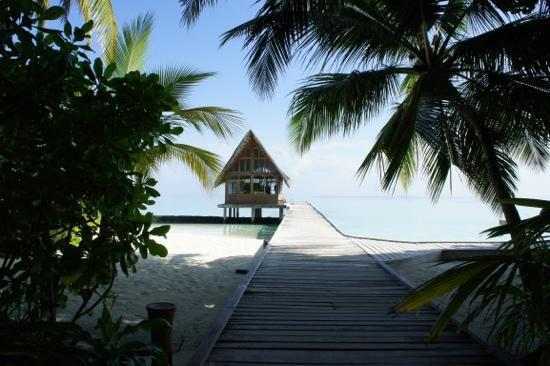 Kuramathi Island Resort: донни бар