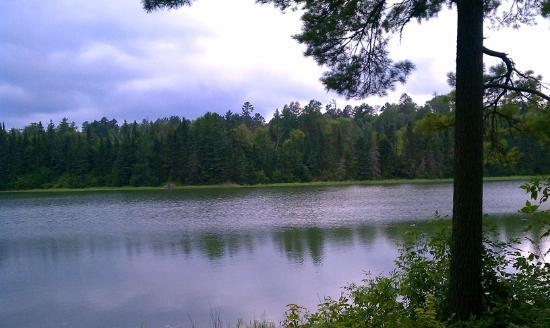 Douglas Lodge : View of Lake Itasca behind cabin