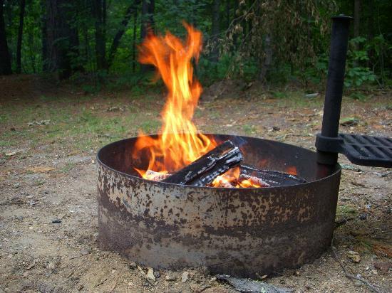 Douglas Lodge: Firepit/grill