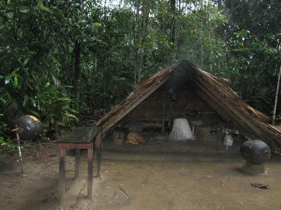 Museu do Seringal Vila Paraiso: Trabalhando com a borracha