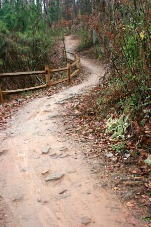Little River Trail: Mountain Biking Trail