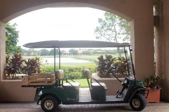 Villas of Grand Cypress: The view from their lobby