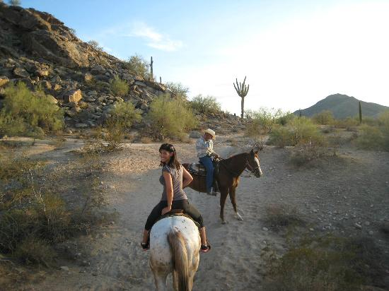 Arizona Horses (Ponderosa Stables and South Mountain Stables): Riding in the desert