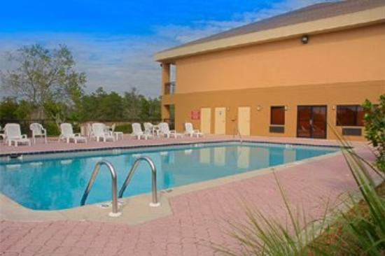 Quality Inn: Swimming Pool
