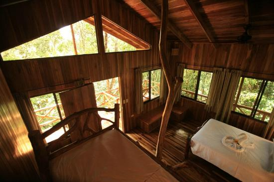 Tree Houses Hotel Costa Rica: Monkey Tree House