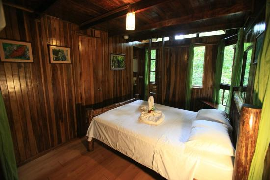 Tree Houses Hotel Costa Rica: Frog Tree House