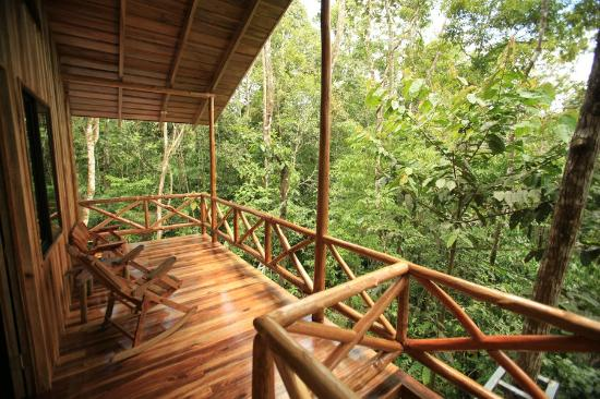 Tree Houses Hotel Costa Rica: View from deck
