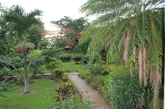 Rincon de la Vieja Lodge: Lodge Grounds.