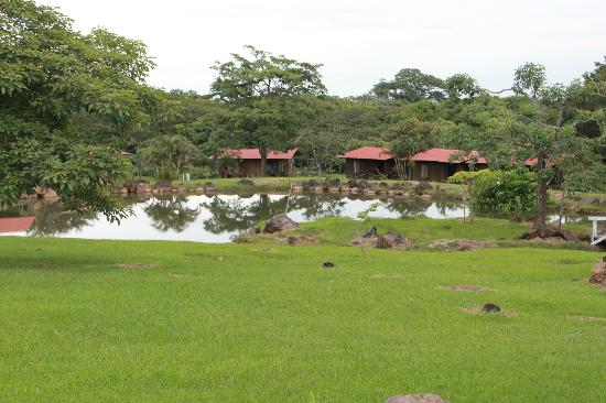Rincon de la Vieja Lodge: Lodge Grounds. Beautiful!