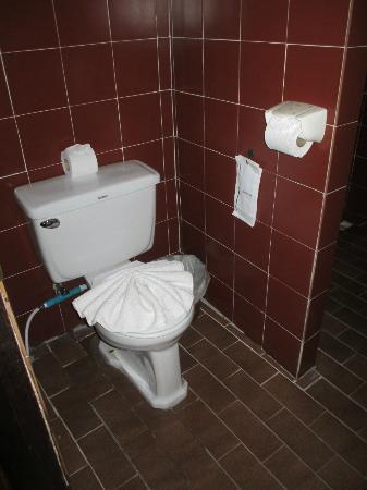 Tropica Resort and Restaurant: Toilet