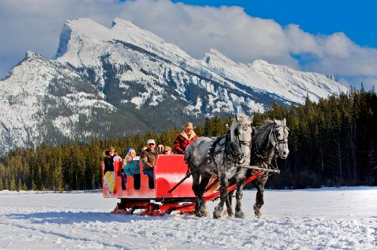 Lake Louise, Canada: Sleigh ride