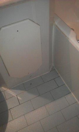 Treacys West County Conference & Leisure Hotel: Bathroom: pretty dodgy